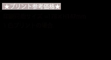 TS-1239 スティックサーモボトル