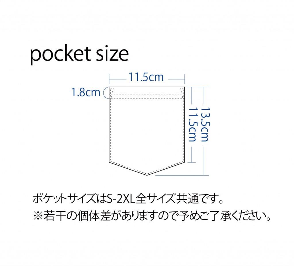 ポケットサイズ
